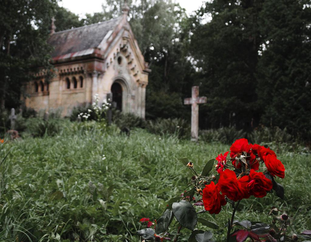Roses For The Dead Via @Atisgailis