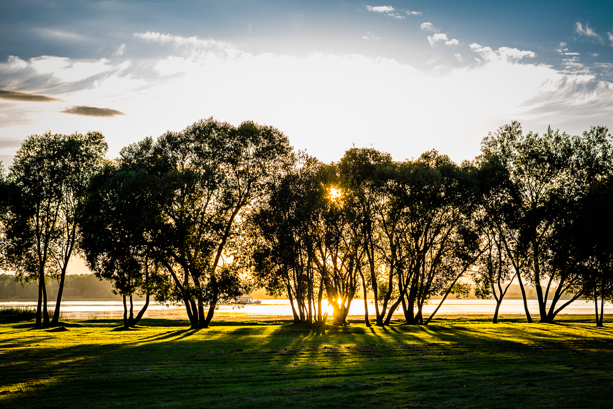 Behind The Trees Via @Atisgailis