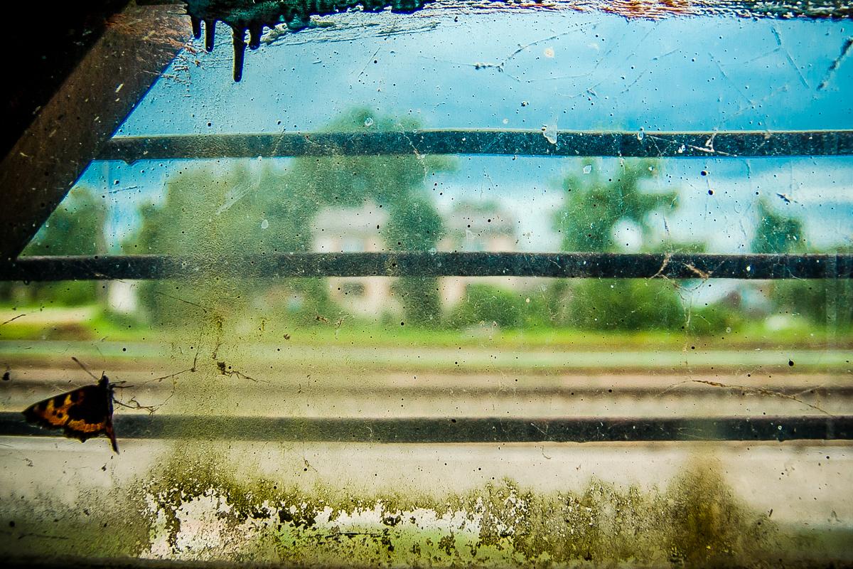 Dirty Window Via @Atisgailis