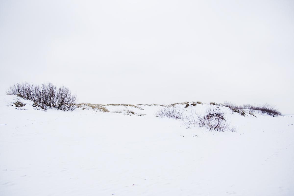 Dune In Snow Via @Atisgailis
