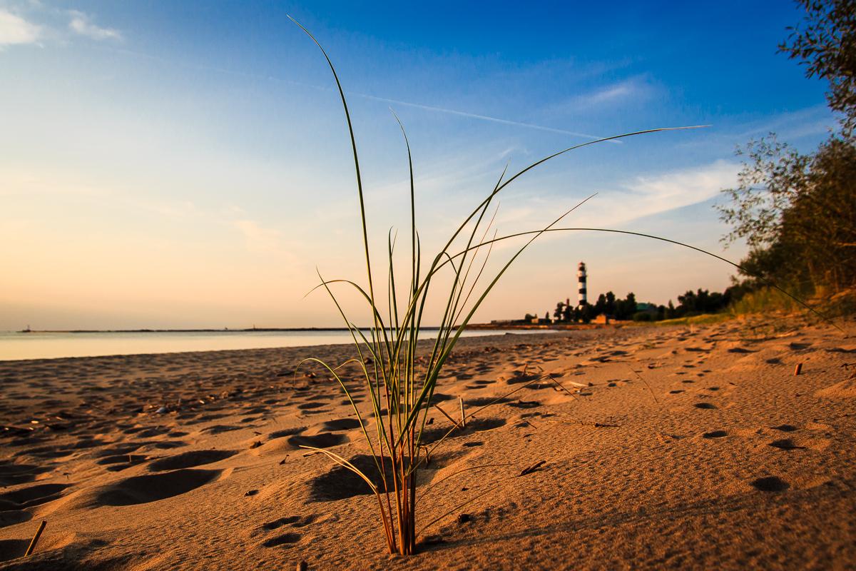 Grass And Lighthouse Via @Atisgailis