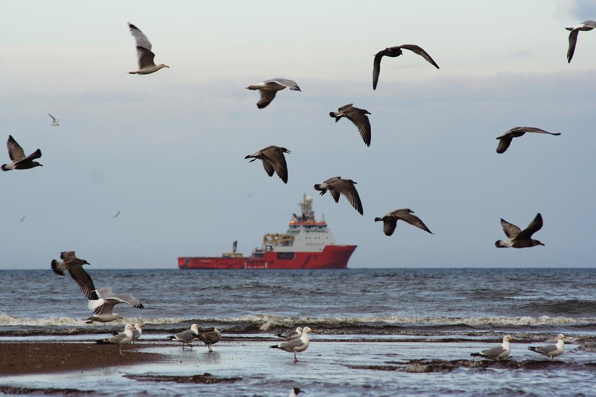 North Sea Via @Atisgailis