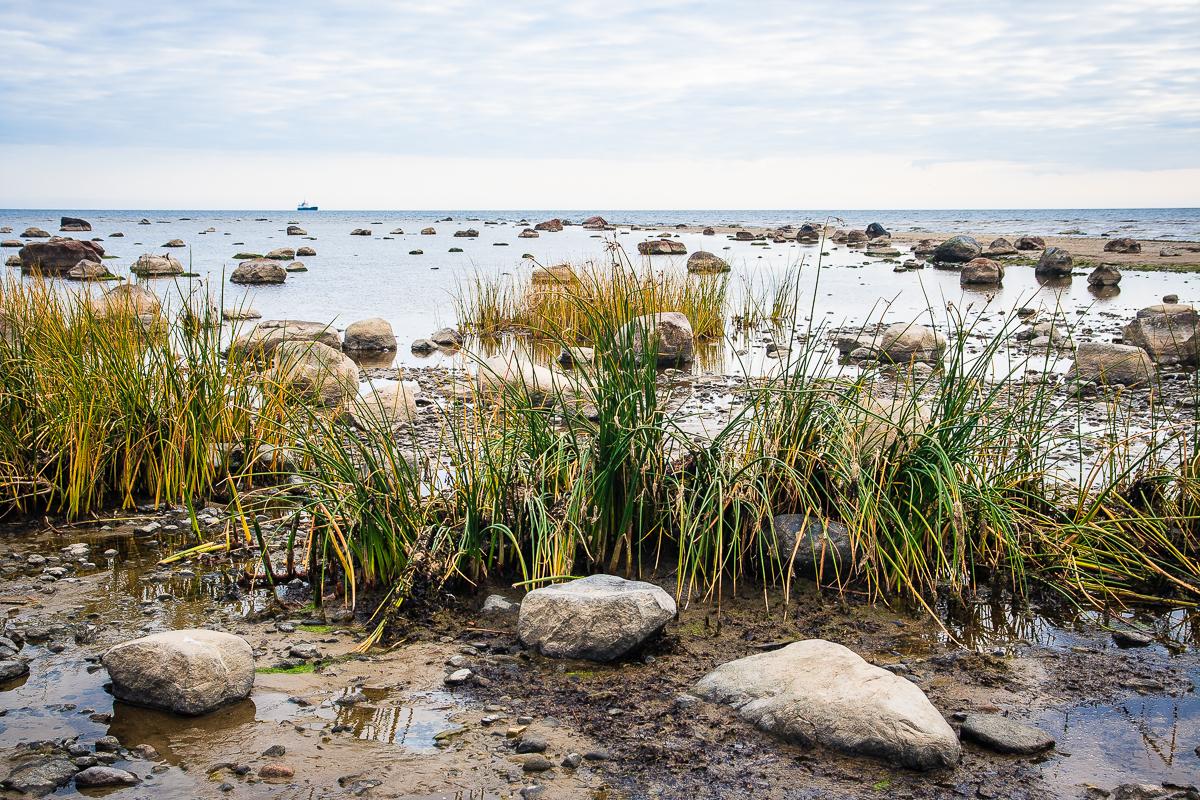 Rocked Sea Via @Atisgailis