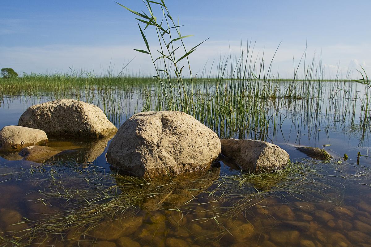Rocks In Lake Via @Atisgailis