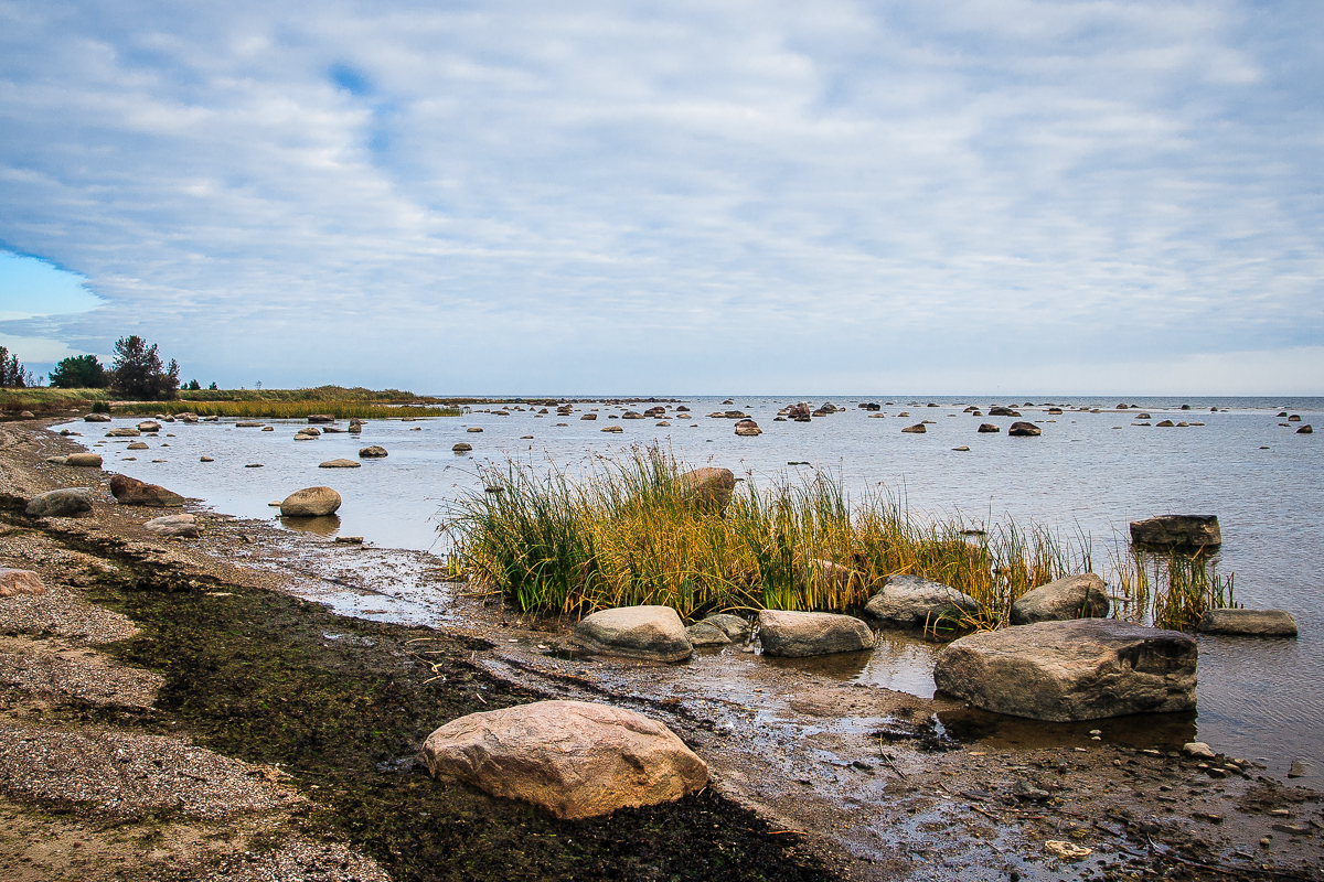 Sea Rocks Via @Atisgailis