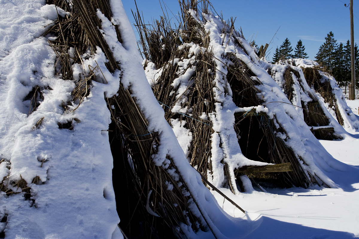Stacked Hemp Under Snow Via @Atisgailis