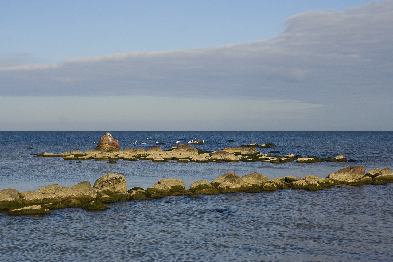 Rocky Sea Via @Atisgailis