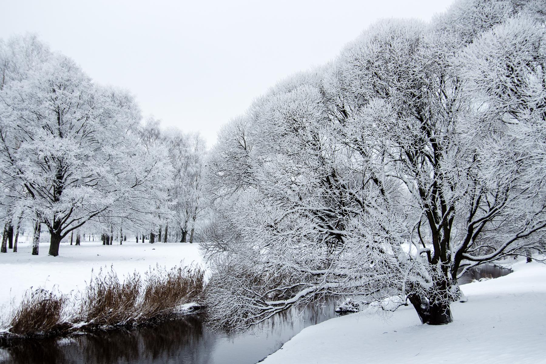 Park In Snow Via @Atisgailis