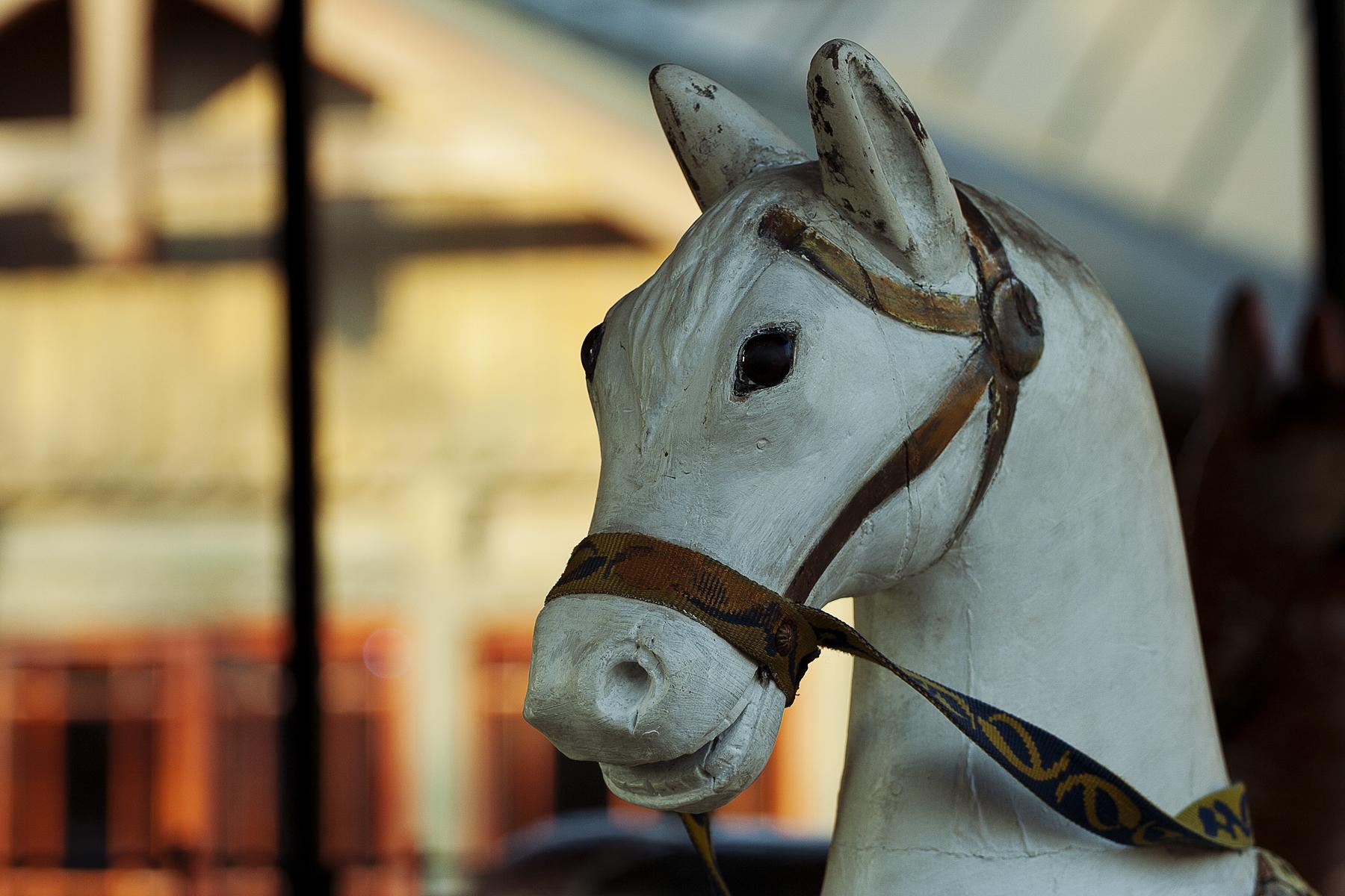 Wooden Horse Via @Atisgailis