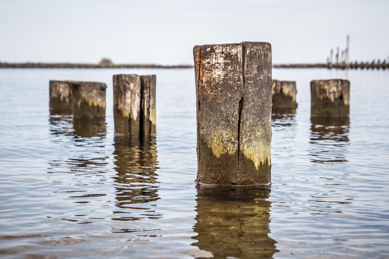 Wooden Piles At Engure Port Via @Atisgailis