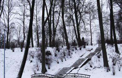 Park In Winter