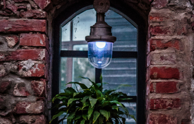 Window With Plant And Blue Lamp