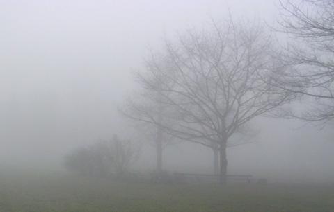 Park In Mist Via @Atisgailis