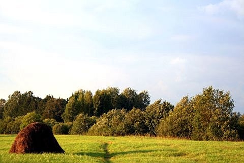 Countryside Of Latvia (Kurzeme) Via @Atisgailis
