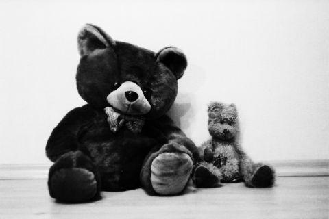 Teddy Bears Via @Atisgailis