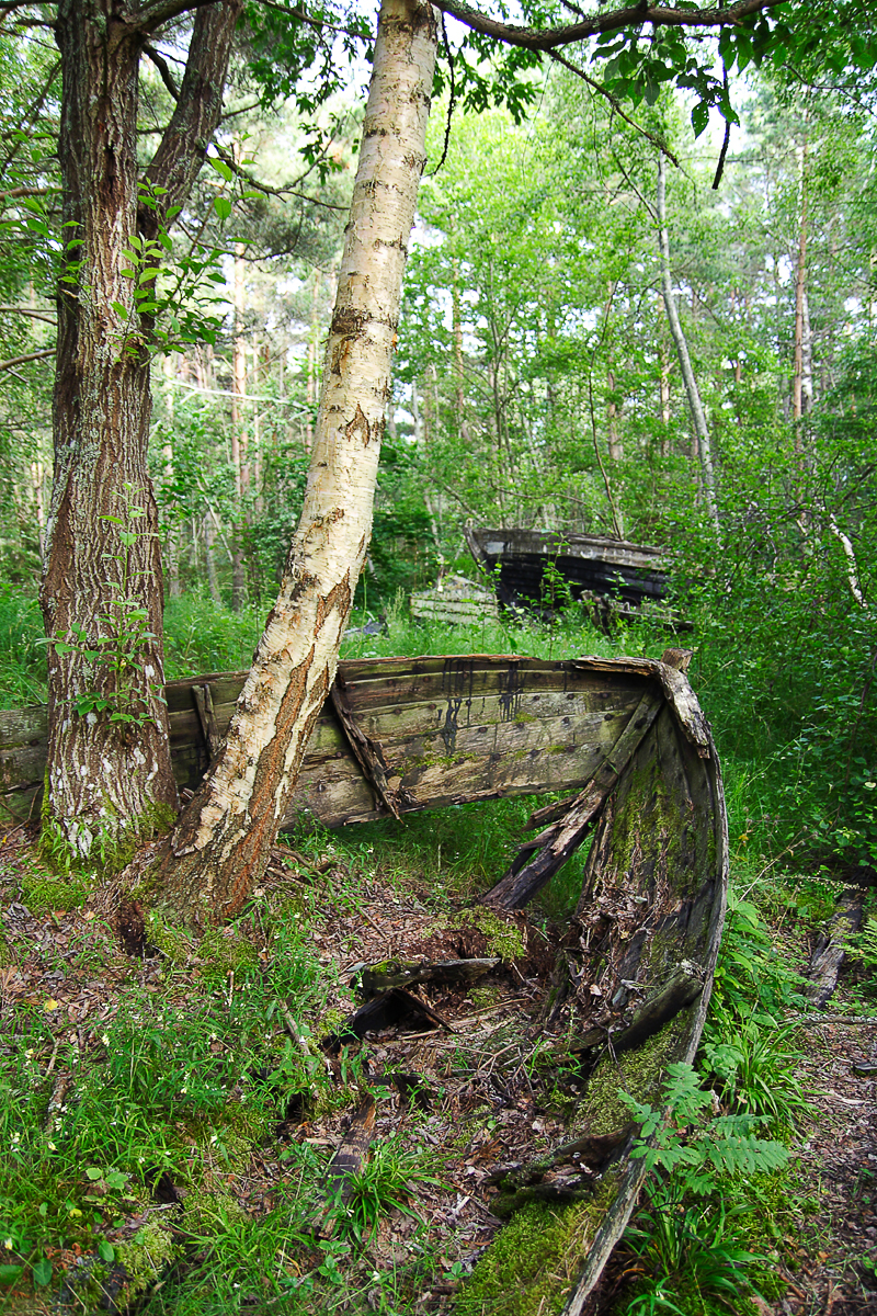 Boat In Woods Via @Atisgailis