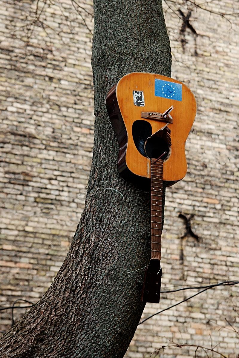 Musical Bird Cage Via @Atisgailis